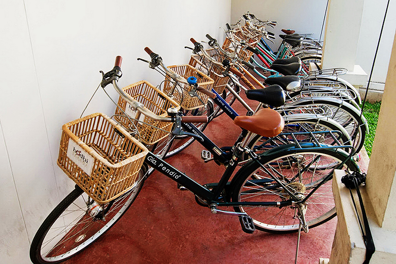 Services - Bicycles For Rent